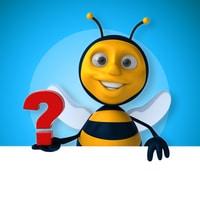 spørsmål om IP adresser