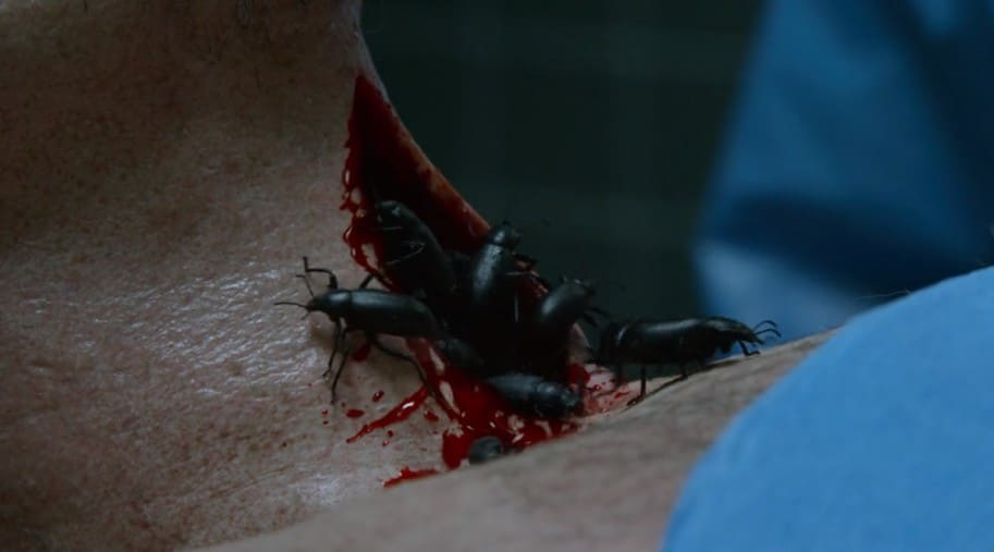 Bugs in The Blacklist season 6, episode 7 - They truly disgust me....
