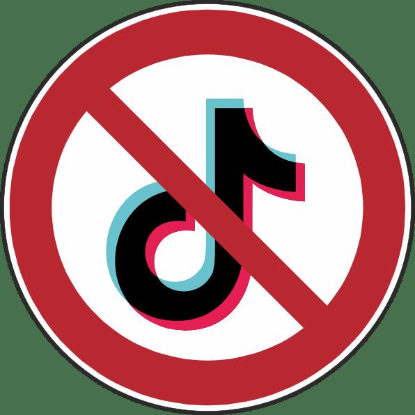 tiktok ban in the usa